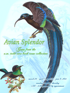 Avian Splendor