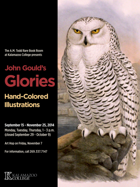 "John Gould's Glories: Hand-Colored Illustrations poster 24""x32"""